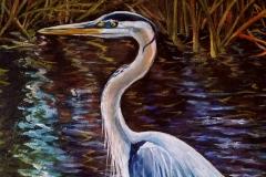 Everglades_heron02-1