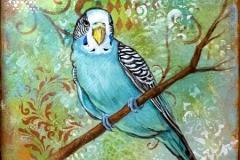 LittleBird4_sm