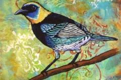 LittleBird5_sm